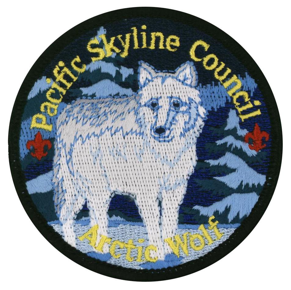 Arctic Wolf Award patch