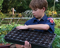 Cub Scout gardening