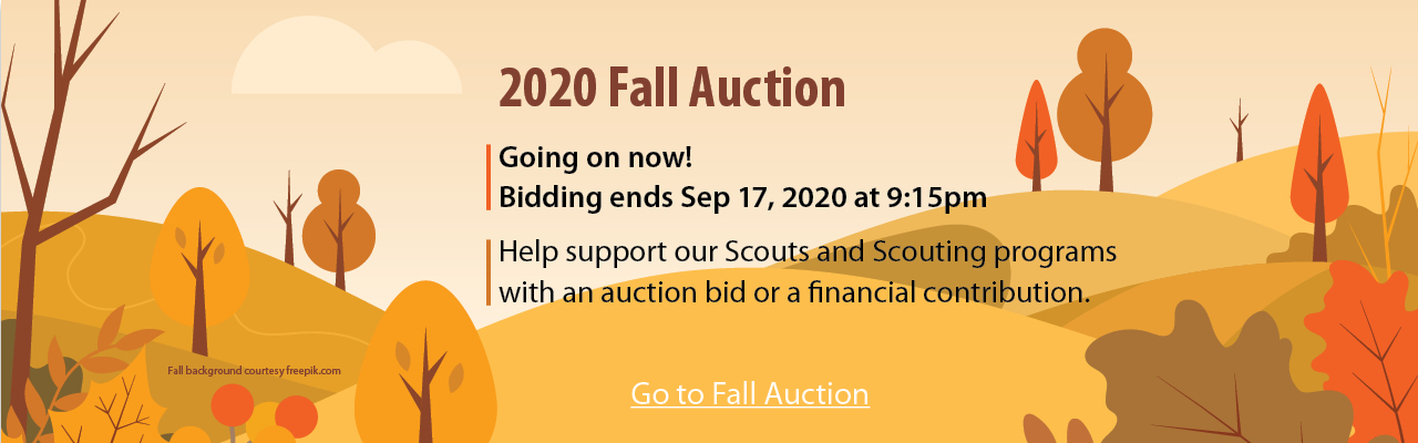 2020 Fall Auction banner